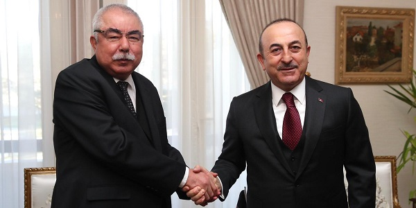 The meeting of Foreign Minister Mevlüt Çavuşoğlu with Rashid Dostum, First Vice President of Afghanistan, 5 February 2019