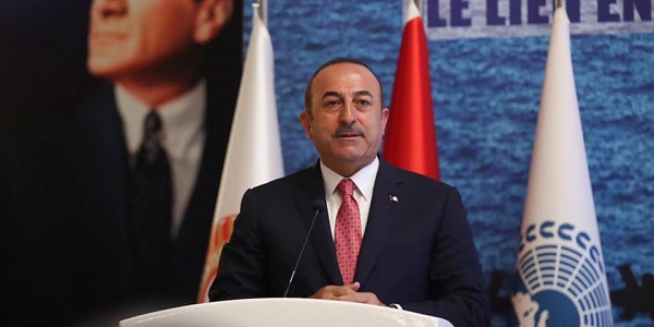 Participation of Foreign Minister Çavuşoğlu in the meeting organized by the Parliamentary Assembly of the Mediterranean, 19 June 2019